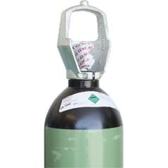 Livsmedelsgaser